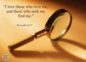 proverbs-8v17
