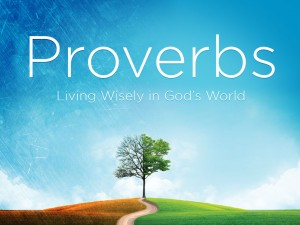 Proverbs-Series-300x225
