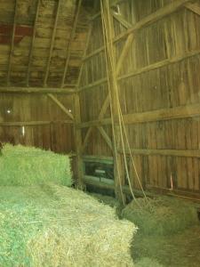 Hay-layers-inside-barn
