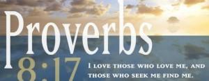 Proverbs 8.17
