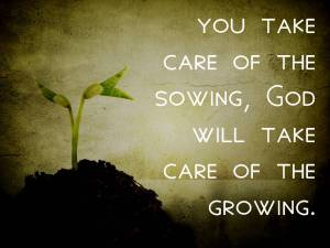 take care to sow