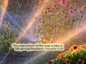Proverbs 13.14