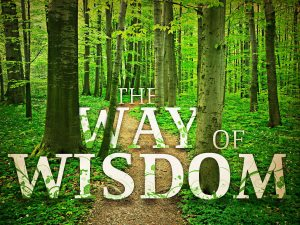 Path of wisdom