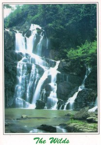 wilds falls