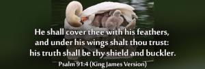 psalm-91-4