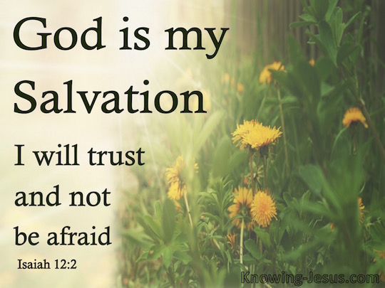 god-my-salvation