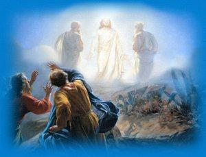 christ-transfigured