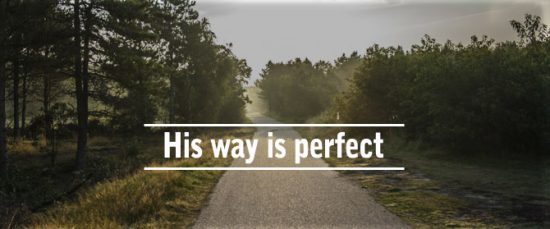 his-way-is-perfect